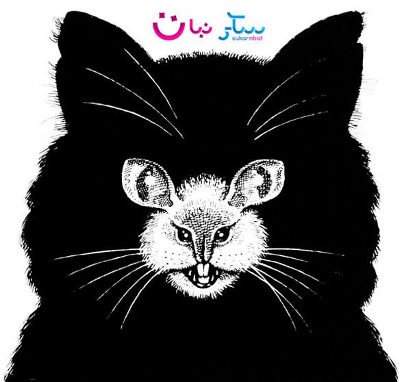 قط أم فأر